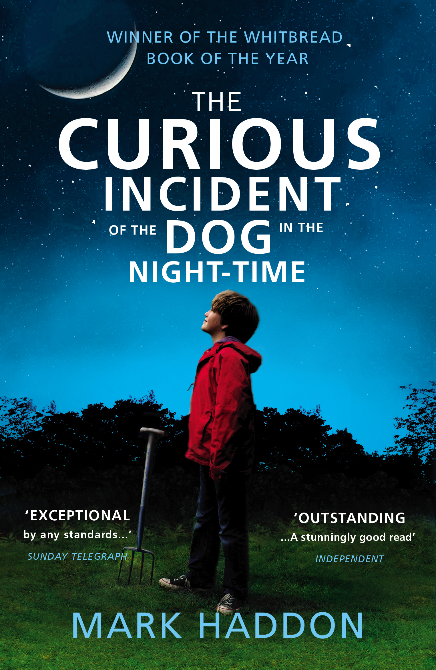 the curious incident of the dog in the nighttime essay % original check your essay for plagiarism