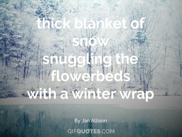 Tiny Snow Angel Snowflakes Kiss Your Rosy Cheeks White Winter Beauty   GIF  QUOTES