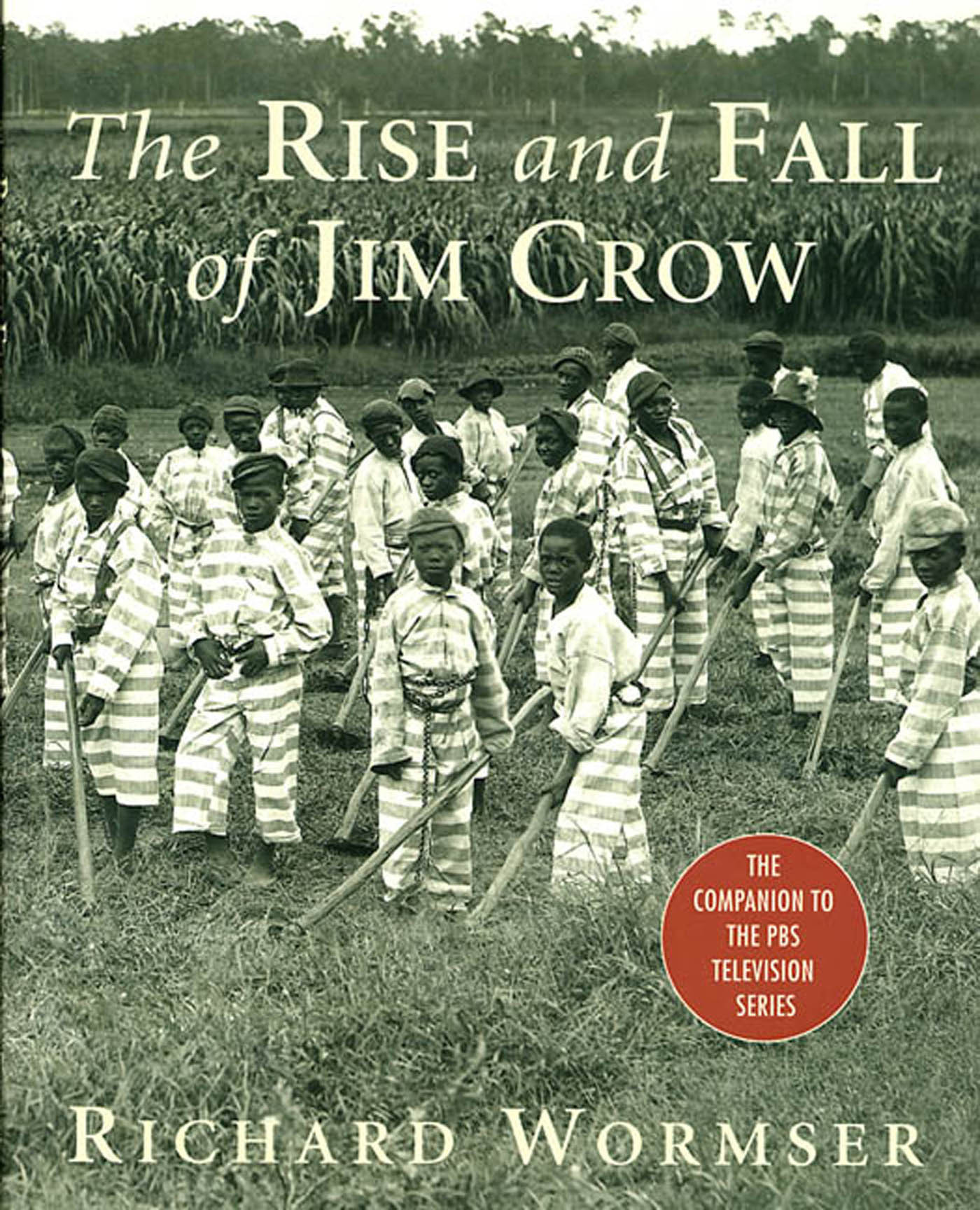 the strange career of jim crow thesis
